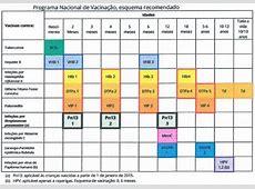 Novo esquema cronológico recomendado do Plano Nacional de