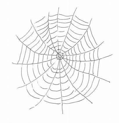 Web Coloring Spider Printable Pages Websites Drawing