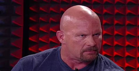 Stone Cold Steve Austin Biography – Facts, Childhood ...