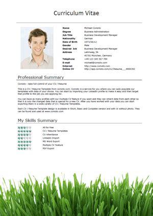 marital status resume format resume format