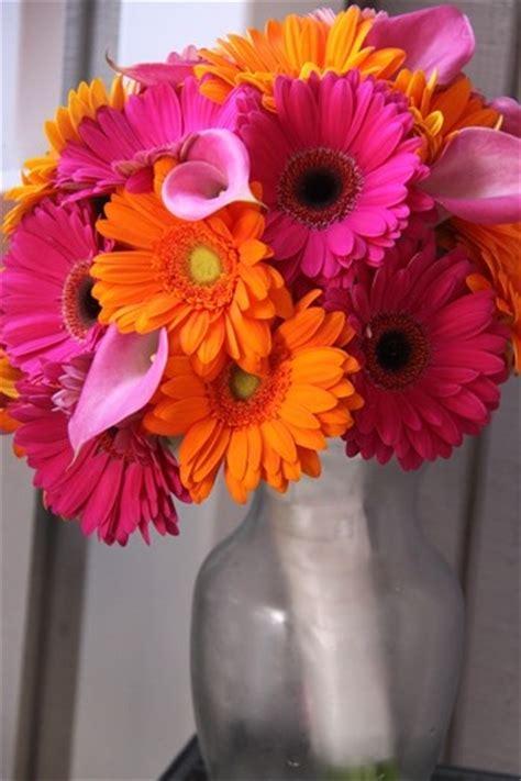 29 Best Gerber Daisy Wedding Bouquets Images On Pinterest