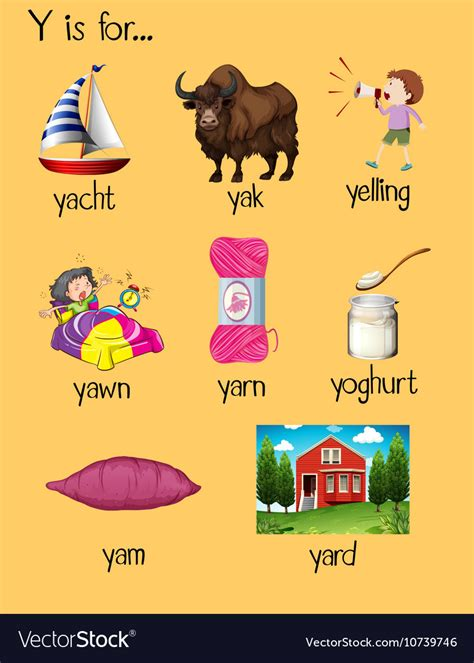 many words begin with letter y royalty free vector image 251 | many words begin with letter y vector 10739746