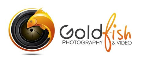 Goldfish Photography & Video
