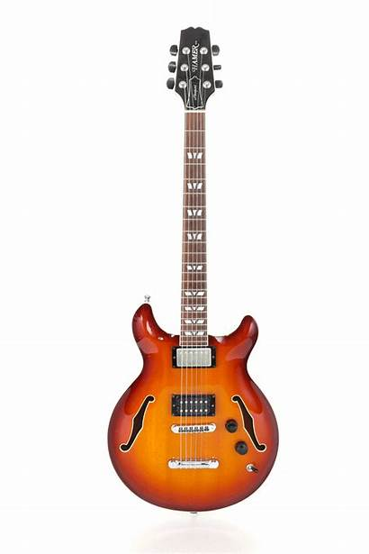 Guitar Action Check Added Pro