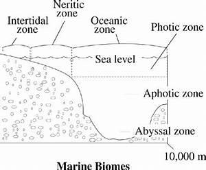 Residential Zone Diagrams