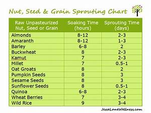 Seed Sprouting Chart How To Sprout Beans So They Don 39 T Give You Gas