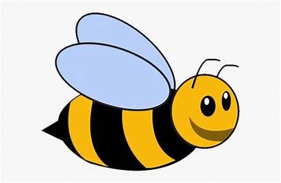 Bee Bumble Cartoon Clipart Template Bumblebee Transparent