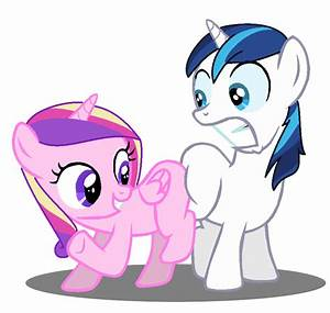 Shining Armor and Cadence Butt Buddies by JCKing101 on ...