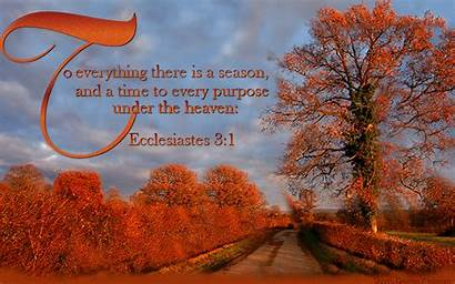 Season Everything There Every Purpose Autumn Under