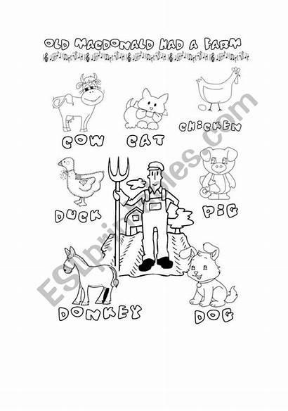 Macdonald Coloring Worksheet Sheet Farm Had Animals
