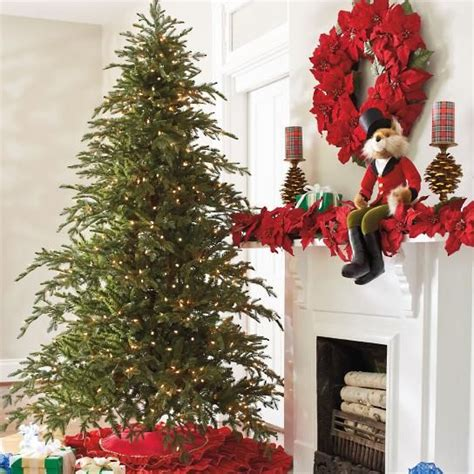 fir christmas tree ideas 7 best noble fir tree images on trees firs and trees