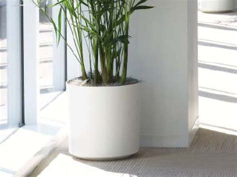 modern indoor planters terrarium design awesome modern ceramic planters