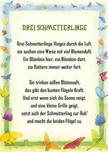 Kleine Fliegen In Blumen : schmetterling gedicht kindergarten erzieherin kita kinder ~ Lizthompson.info Haus und Dekorationen