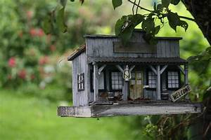 Cool Bird House Photograph by Donna Walsh