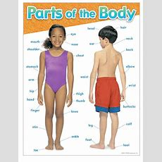 Body Parts  English 4 Me 2