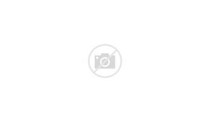 Social Website Infographics