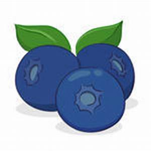 Cartoon Vector Illustration of Blueberry Fruits Food ...
