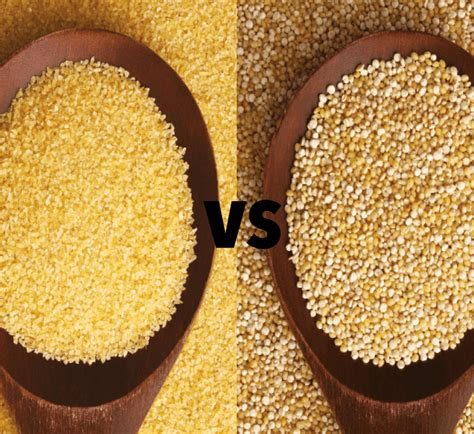 ingredient cuisine which is healthier quinoa or couscous healthy food guide