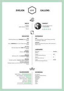 curriculum vitae voorbeeld word document 27 magnificent cv designs that will outshine all the others seenox