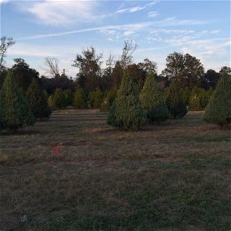 shady pond tree farm nurseries gardening 37226 pine