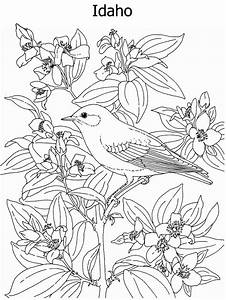 Louisiana State Flag Coloring Page - AZ Coloring Pages