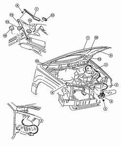 98 Dodge Tailgate Parts Diagram  Dodge  Auto Wiring Diagram