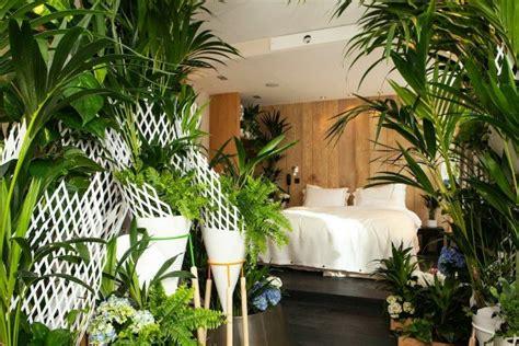 plantes pour chambre les plantes vertes dans la chambre annikapanika