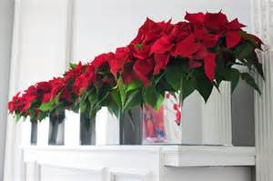 flower decorations poinsettia christmas table design by the flower firm