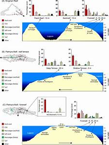 Benthic Communities At Two Remote Pacific Coral Reefs