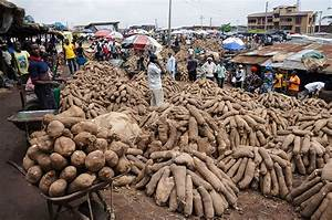 Seeing Agriculture in Nigeria as a Business | by Victoria ...