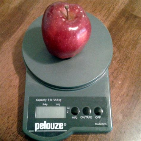 how much water is in an apple how much water is in an apple science activity