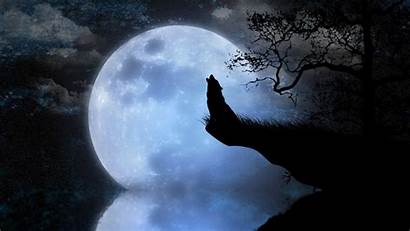 Howling Moon Wallpapers Wolf Mond Wallpaperplay Wolves