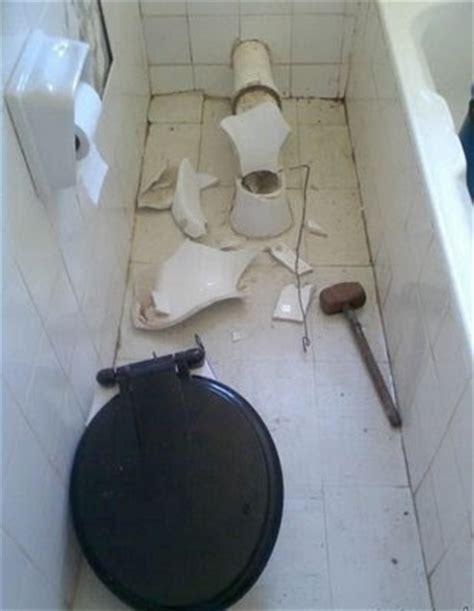 snake   toilet  india