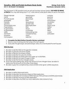 Dna And Protein Synthesis Study Guide Answers