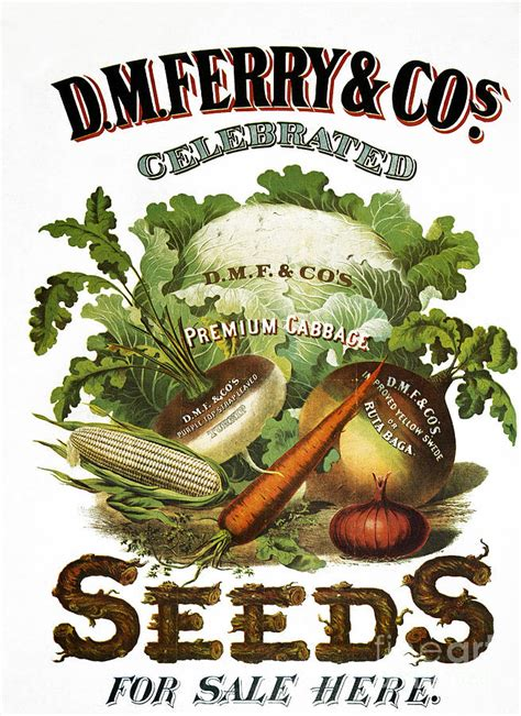 myhortus seed company victory garden posters
