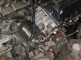 Images of Oil Gasket Leak