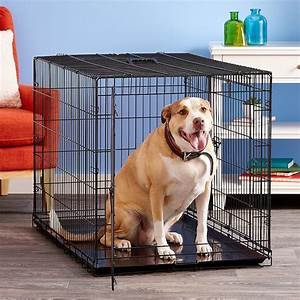 Precision, Pet, Products, Great, Crate, Double, Door, Dog, Crate, Large