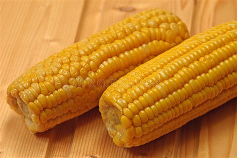 Boiled Maize, Indian Corn, Corn Stock Photo - Image of ...