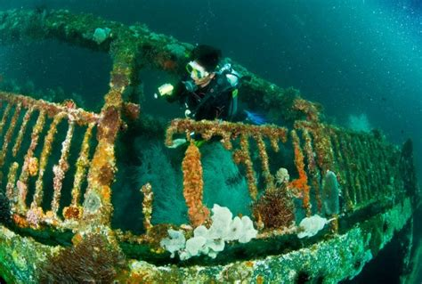 top  wreck dives   philippines stories