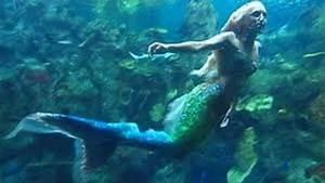 Real Mermaid Caught on Video!?! Real Mermaid 2013!?! - YouTube