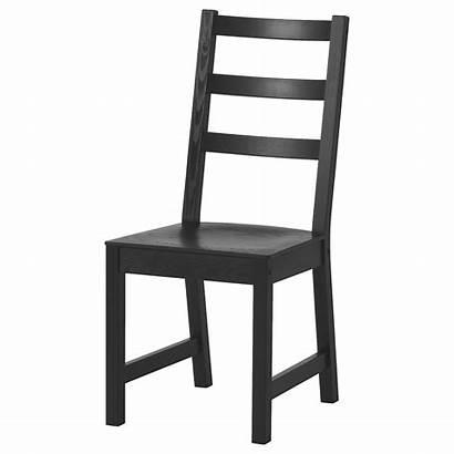 Ikea Chair Nordviken