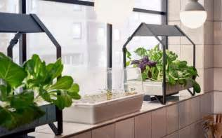 Best Aquaponic And Led Growing Light Images On