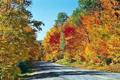 Fall Desktop Wallpapers Background Colors Screensavers Autumn