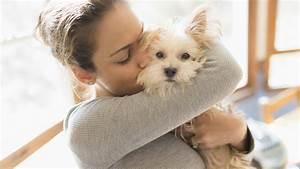 130 Unique Female Dog Names to Match Your Little Princess ...