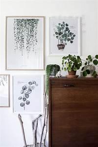 Außergewöhnliche Pflanzen Wohnung : 1000 ideas about sch ne zimmerpflanzen auf pinterest gl hbirnen vase zwiebel pflanzen und ~ Sanjose-hotels-ca.com Haus und Dekorationen