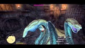 Dragon's Dogma - Warrior - Everfall Hydra (Archydra) - YouTube
