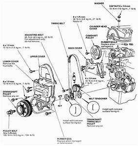 2007 Honda Civic Lx Parts Diagram