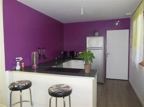 meuble murale cuisine couleur meuble cuisine tendance trendy peinture cuisine
