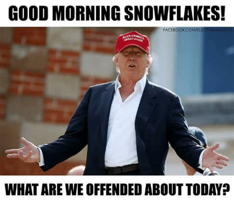 Snowflake Memes - good morning snowflakes comelect trump2020 facebook griratagam what are we offendedabout today
