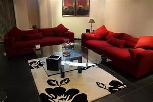 photo salon et rouge deco photo decofr With tapis champ de fleurs avec modeles de canapes salon